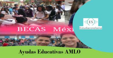 Ayudas Educativas