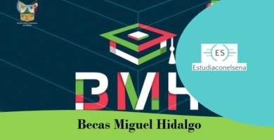 Becas Miguel Hidalgo