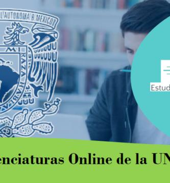 licenciaturas online
